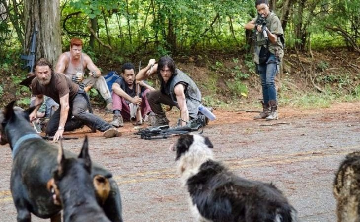 ¿Conoces al perro más importante de 'The Walking Dead'?